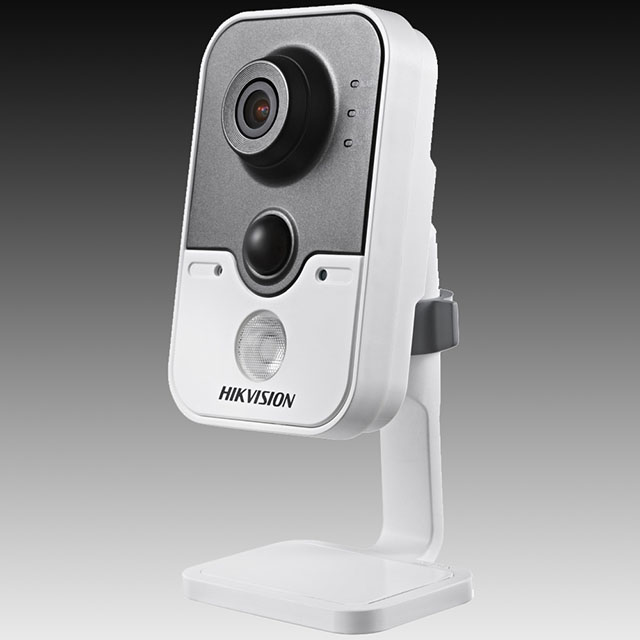 DS-2CD2432-IW Camera